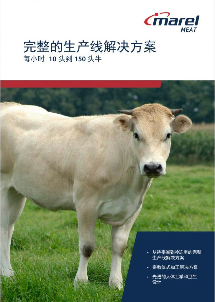 完整的生产线解决方案 - 牛